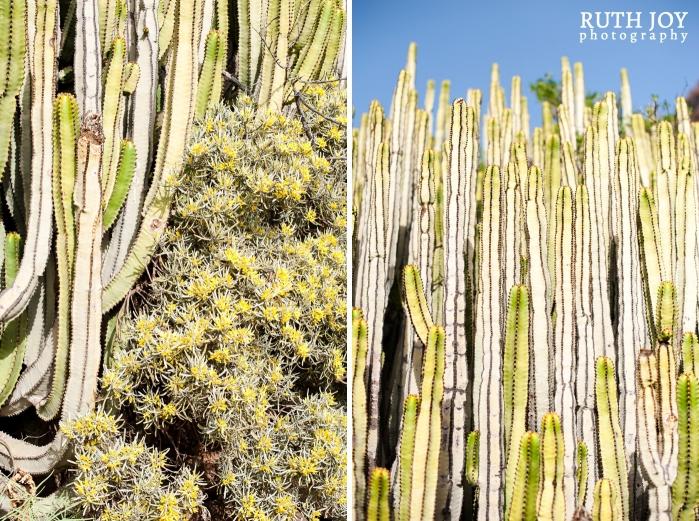 Gran Canaria Ruth Joy Photography _0055