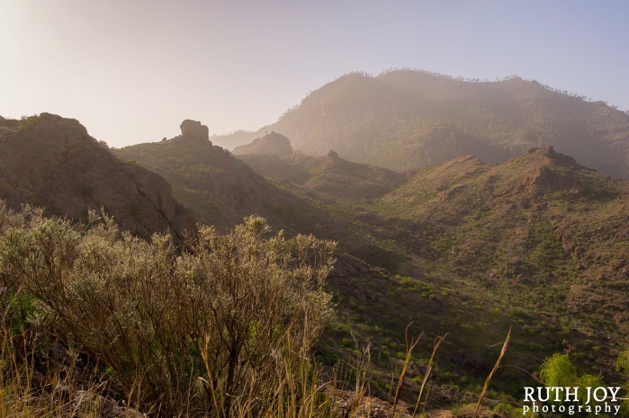 Gran Canaria Ruth Joy Photography _0109
