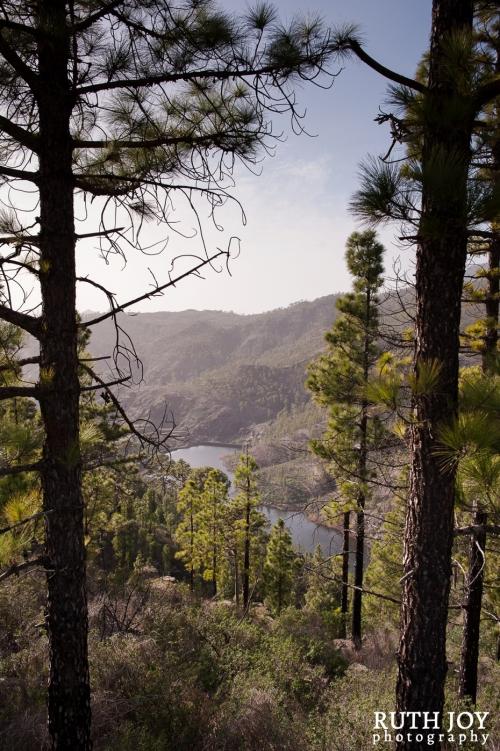 Camping Gran Canaria, Las Presas de las Cuevas de las Niñas